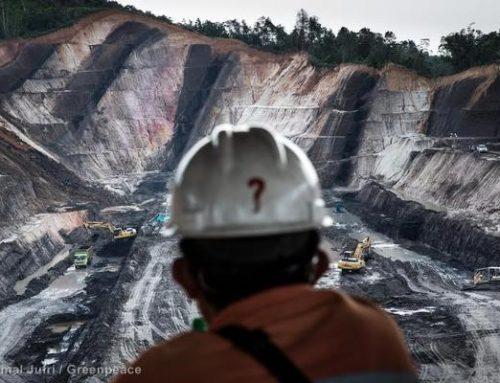 Batu Bara Merana, Energi Terbarukan Berjaya di 2020
