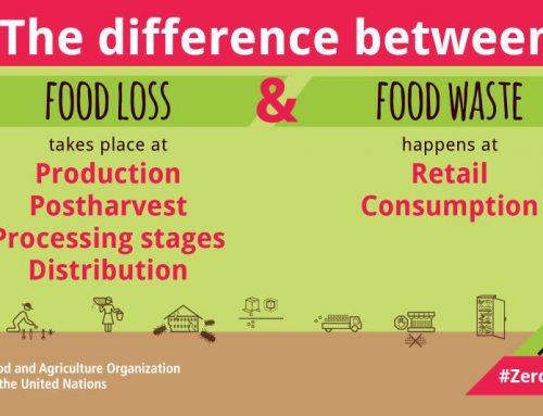 Makanan Terbuang vs Limbah Makanan