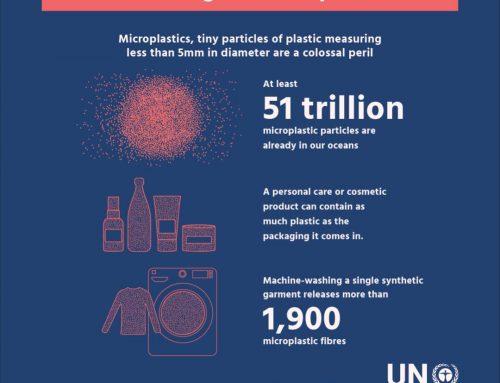 Sumber Pencemaran Plastik di Laut