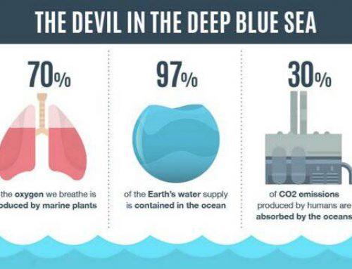 Manfaat Laut bagi Lingkungan Global
