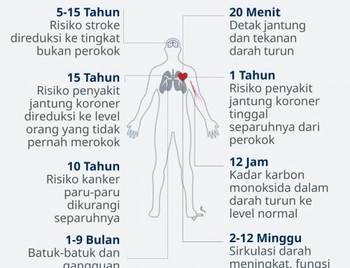 Efek dan Manfaat Berhenti Merokok bagi Tubuh Anda