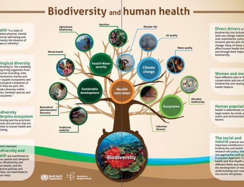Manfaat Keanekaragaman Hayati bagi Hidup Kita
