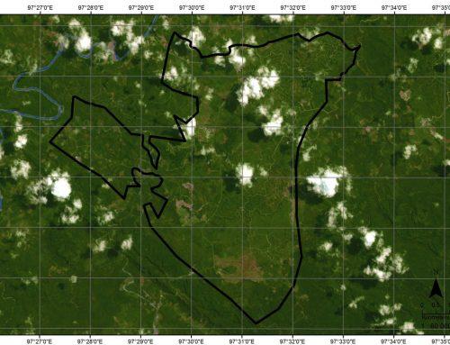RGE Langgar Komitmen Nol Deforestasi