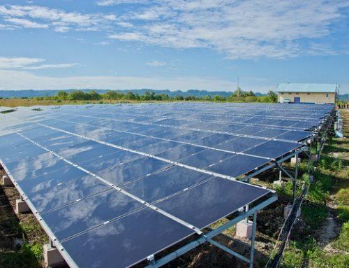 Omnibus Law Versus Renewable Energy Bill